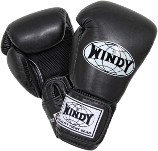 windy-clima-cool-muay-thai-gloves